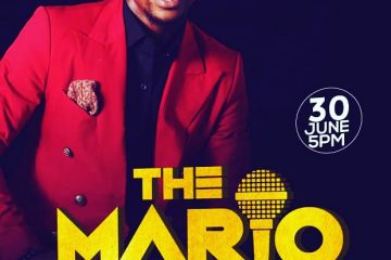 THE MARIO EXPERIENCE