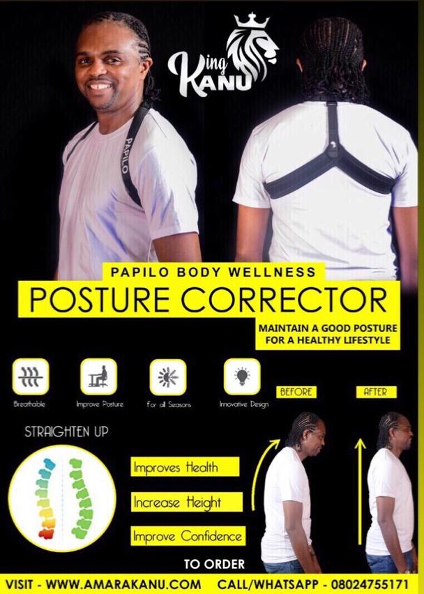 PAPILO BODY WELLNESS AND POSTURE CORRECTOR