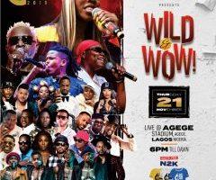 AFRICA MUSIC VILLAGE WILD & WOW