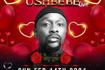 THE CHRONICLES OF USHBEBE 2021